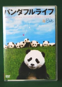 pandaful1