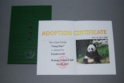 März 2012 Panda Adoptionen