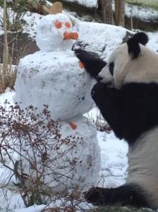 Tian Tians Snowman