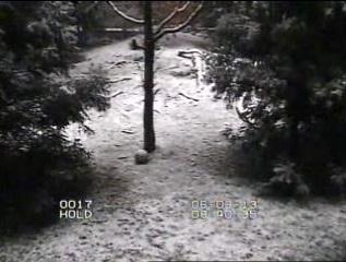 Schnee-neu