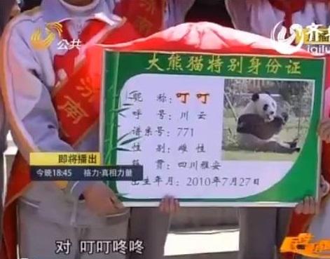 Die Feier im Jinan Zoo