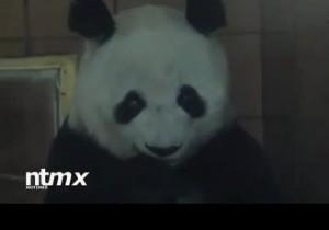 Xiu Hua1