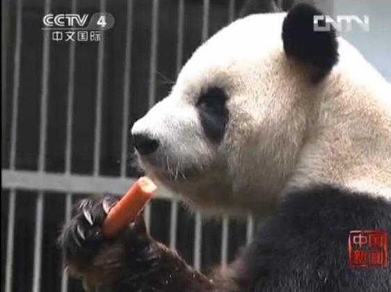 Im Fuzhou Zoo