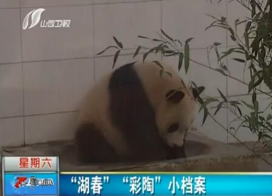 News Taiyuan Zoo