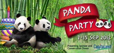Singapore Große Pandas