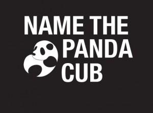 name pandic