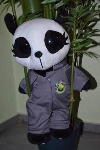 Panda-Charity 2014