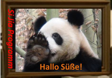 Si Jia ist munter und fröhlich