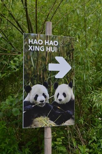 Hao Hao & Xing Hui grüßen