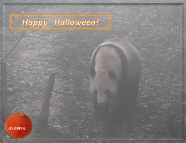 Giant Panda: Happy Halloween