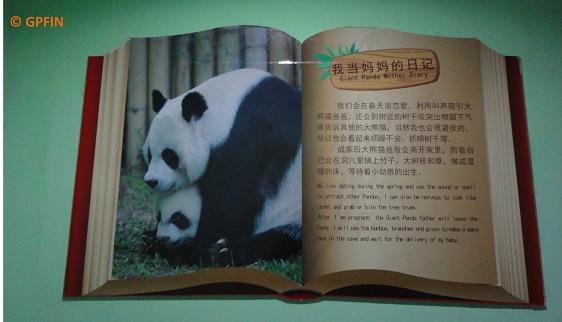 Giant Panda Bibliothek