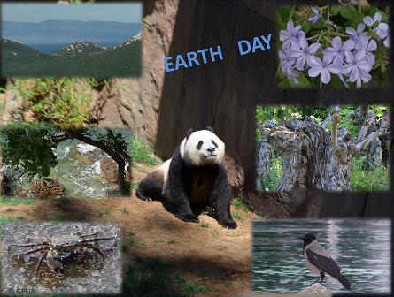 22. April: Earth Day