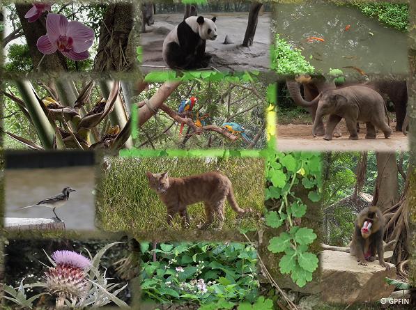 22. Mai – Int. Tag der Biologischen Vielfalt