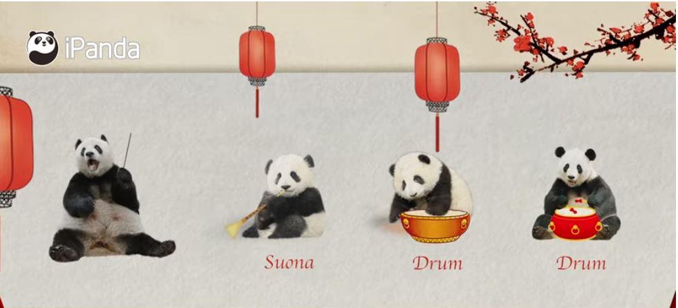 Panda New Year's Concert   iPanda
